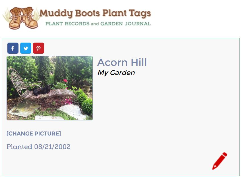 plant-view-of-acorn-hill
